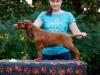 Contario Ode H-litter 9,5 weeks,  light green girl