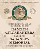 Памяти Сабанеева 2020