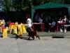 17.06.2012 г.Клин, Всероссийская выставка