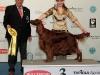 Nordic & Finnish Winner Shows 2009, Contario Ode Winconta - 2*BOB, BIG-III