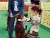 20.10.2011, Всероссийская выставка