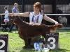 Contario Ode Capella, 11 месяцев,Best in Group - I, Best in Show Juniors - III