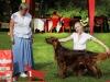 Fansett Secret Contario Ode - Лучший представитель породы на монопородной выставке ИС 04-08-2012