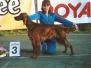 2004 год - Фотографии Дриады в возрасте до 2 лет.