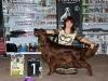 Contario Ode Winconta, Лучшая собака 7 группы на международной выставки в Харькове 2011
