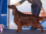 """24-25.03.2012, Международная выставка собак \""""Евразия\"""""""
