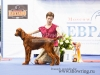 Contario Ode Opium at BIS Puppy finals