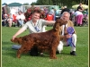 Asoftwind Of The Golden Vale, Best in Show 2009