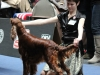 18.05.2012, World Dog Show Salzburg