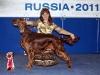 Dioskury Driada - Лучший ветеран породы на России 2011