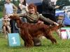 Contario Ode Capella, Лучшая собака 7 группы