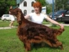 Contario Ode Whirlwind Fire (Вик) c хозяйкой Ивановой Анной на выставке