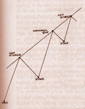 правильный способ построения уровня возбуждения Stack - gaiting по кругу (все собаки) - stack - gaiting (индивидуальный) - stack - gaiting по кругу