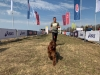 Забег «Кросс быстрый пес»