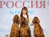 Contario Ode - Лучший питомник породы России 2019