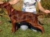Red girl, 13 weeks