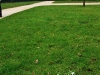 Alnwick Castle and Garden