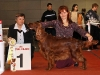Contario Ode Winconta, CAC, BOB, BIG-I, Best in Show  - III