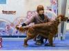Eurasia 2013, Contario Ode Inspiration - 4th exl Judge Hana Ahrens