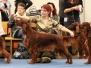 """3-4.12.2011, Международные выставки \""""Finnish & Helsinki Winner 2011\"""" в Финляндии."""