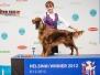 """8-9.12.2012, Международные выставки """"Finnish & Helsinki Winner 2012"""" в Финляндии."""