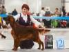 Монопородная выставка ранга ПК в рамках России 2014, Contario Ode Raphsody - RCW, CC