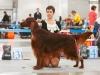 Монопородная выставка ранга ПК в рамках России 2014, Contario Ode Divin Essor - CW, CC, 3d Best Dog