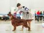 Россия - 2013 и Монопородная выставка ранга ПК