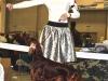 Монопородная выставка Ирландских сеттеров в рамках Всероссийской выставки им Сабанеева. Вторая Лучшая сука породы Contario Ode Infiore
