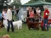 Contario Ode Capella, Лучшая собака выставки - V